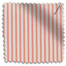 candyfloss huckleberry stripe